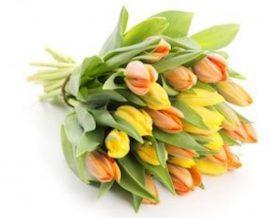 natúr tulipán csokor